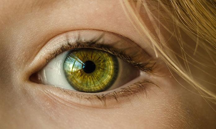 Dla oka i oczka